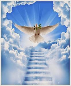 stairway_to_heaven_by_xo_natureschild_ox-d56e6x5